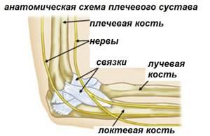 Боль в локтевом суставе: причины, лечение, при поднятии