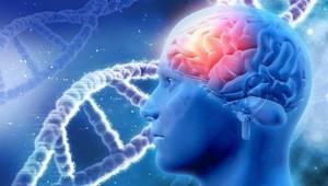 Почему когда долго спишь болит голова: головная боль