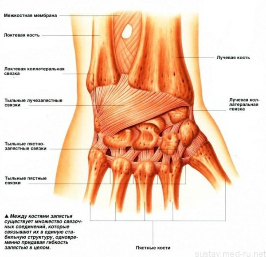Растяжение связок кисти руки: лечение в домашних условиях, симптомы