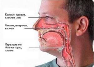 Немеют губы и язык: причины, почему онемели, лечение