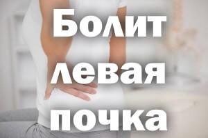 Болит почка с левой стороны: симптомы, лечение, при беременности