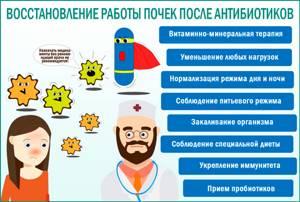 Болят почки после антибиотиков: что делать, при приеме